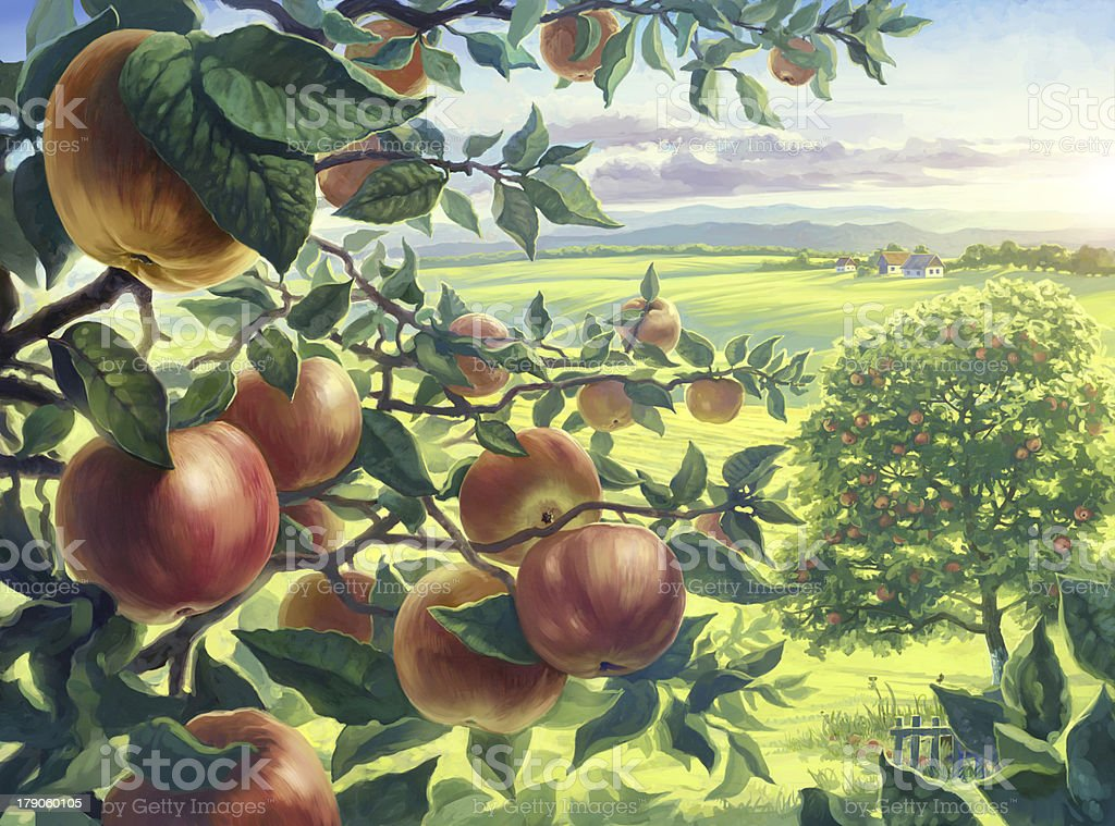 Summer landscape with apples. vector art illustration