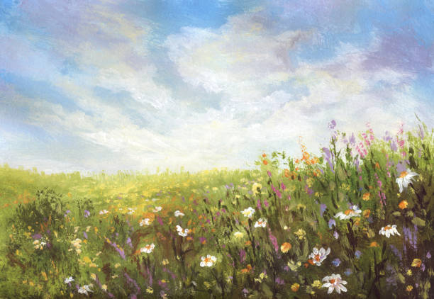 summer meadow, painting - wildflowers stock illustrations, clip art, cartoons, & icons
