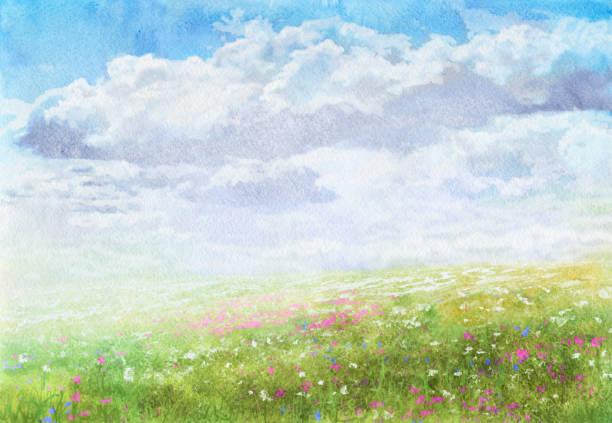 Pré de l'été, aquarelle - Illustration vectorielle