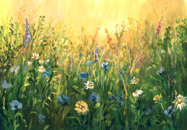 summer meadow, watercolor painting - oil painting stock illustrations