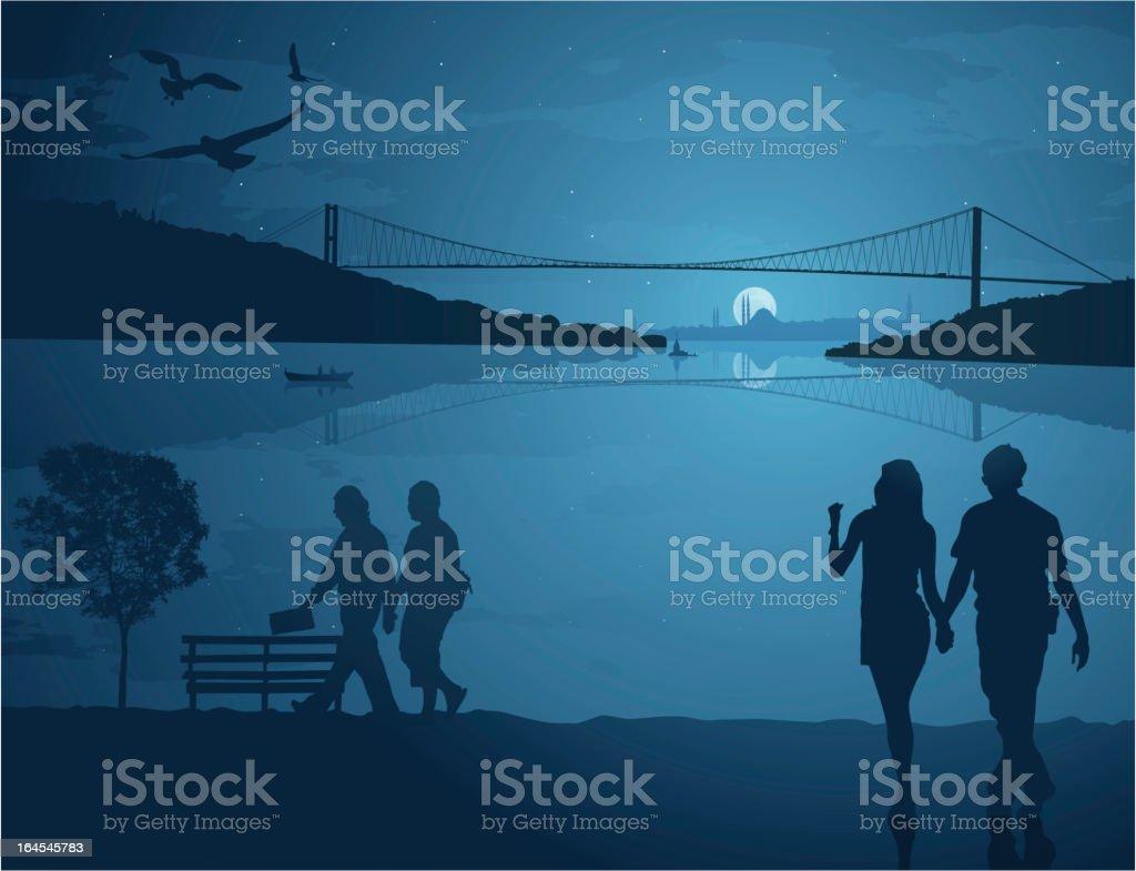 Summer night in Istanbul vector art illustration