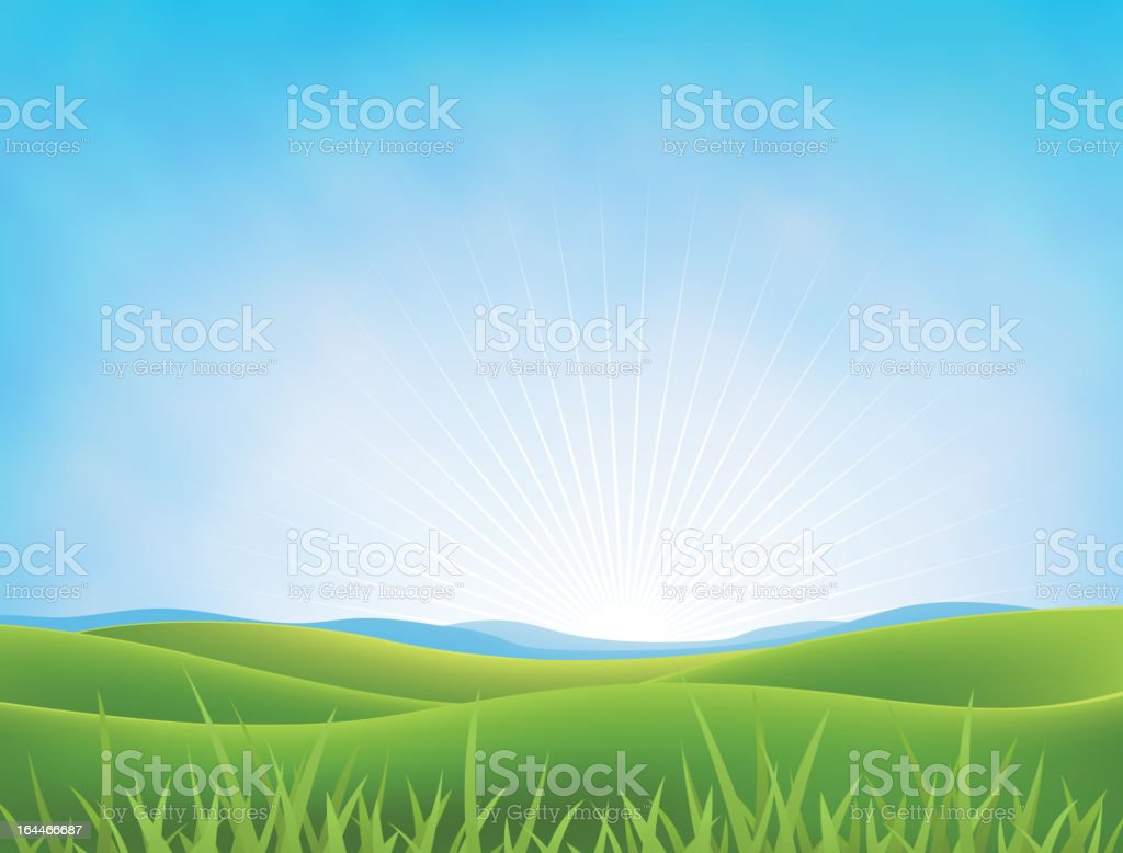 Summer Or Spring Meadows Background vector art illustration