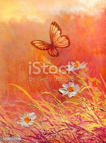 Sunny meadow with butterfly and daises. Abstract paintings.