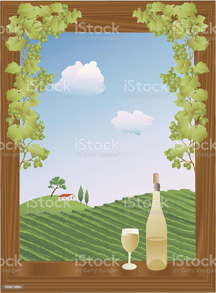 summer vineyard vector art illustration