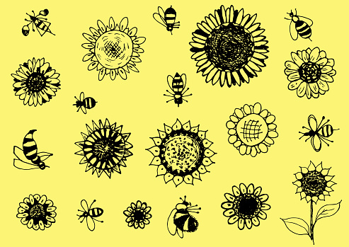 Sunflowers and bees contour vector illustration hand drawing