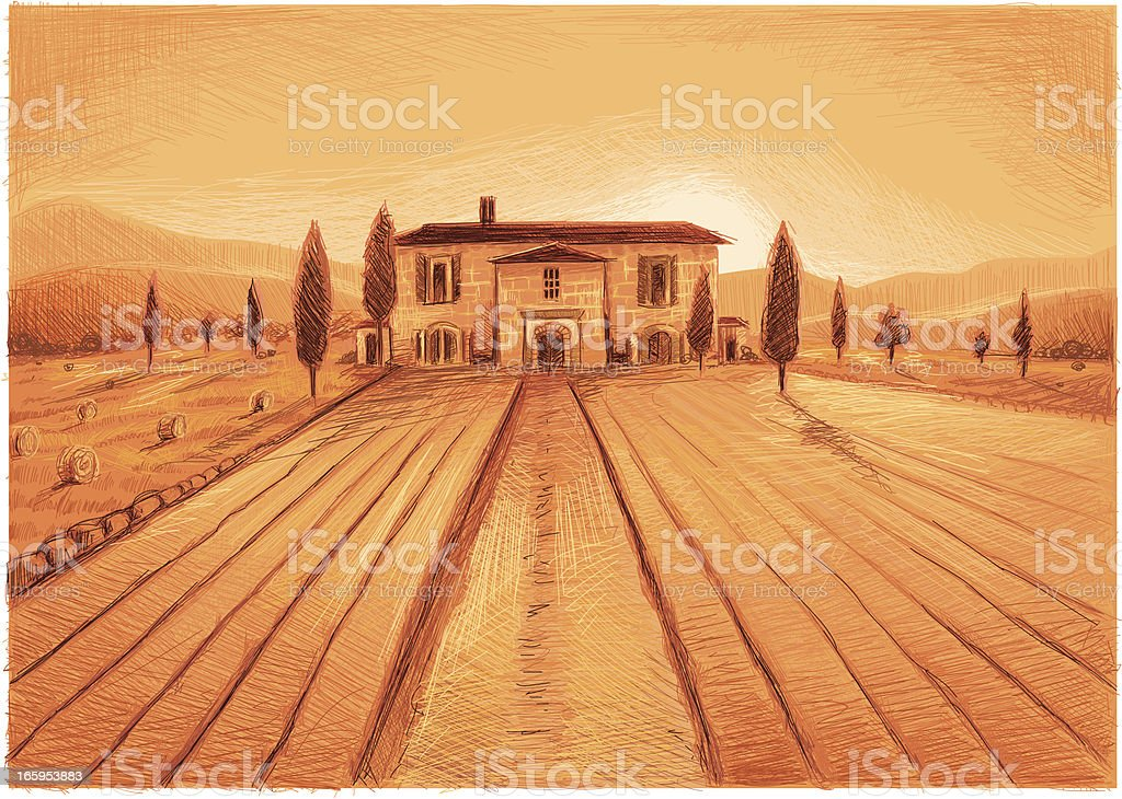 sunny tuscany vector art illustration