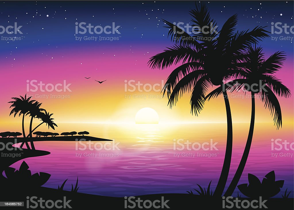 Sunset beach landscape with palm tree silhouette vector art illustration