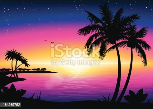 Sunset Beach Landscape With Palm Tree Silhouette Stock Vector Art 164565752