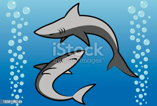 istock Swimming Sharks 163819624