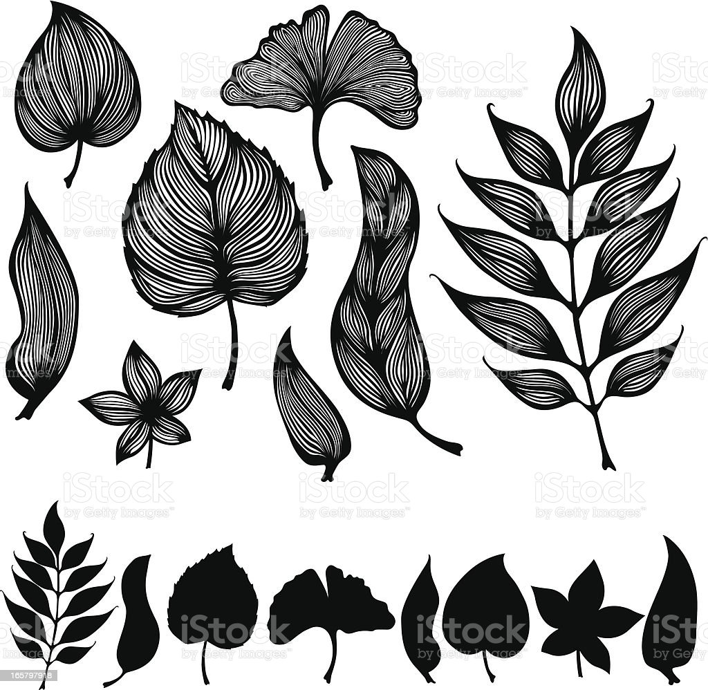 Swirly Leaves royalty-free stock vector art