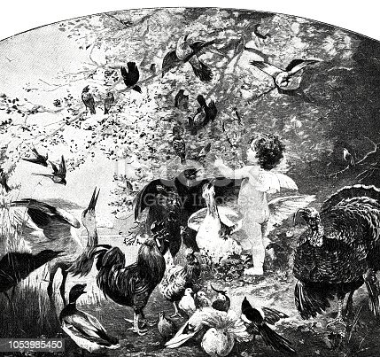 istock Symbolic: Angels feed a large flock of birds 1053985450