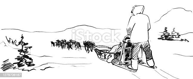 istock Team of sled dogs penсil sketch 1279706187