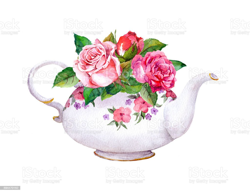 Teapot with rose flowers. Watercolor vector art illustration