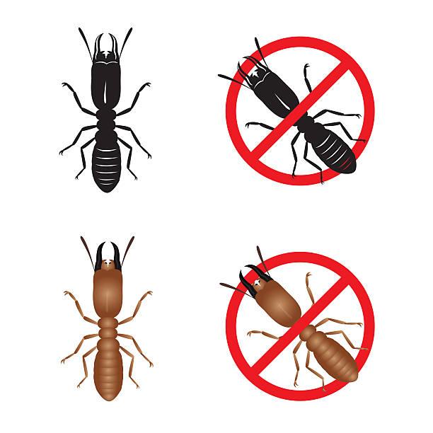 stockillustraties, clipart, cartoons en iconen met termite and stop termite sign symbols vector design - termietenheuvel