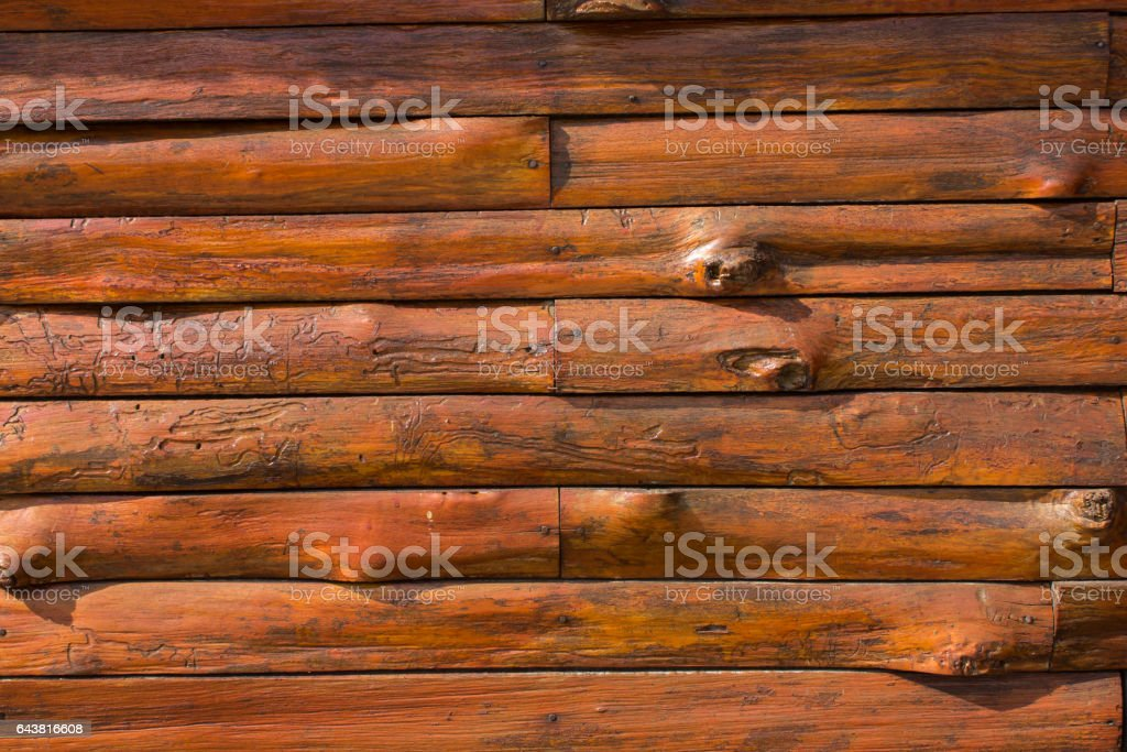 texture of bark wood use as natural background vector art illustration