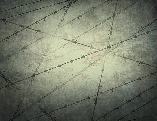 stockillustraties, clipart, cartoons en iconen met texture of the prison bars in the background. jail. - conflict