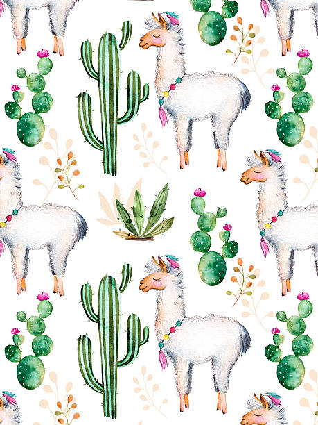 Textura con acuarela cactus y plantas, flores y Lama - ilustración de arte vectorial