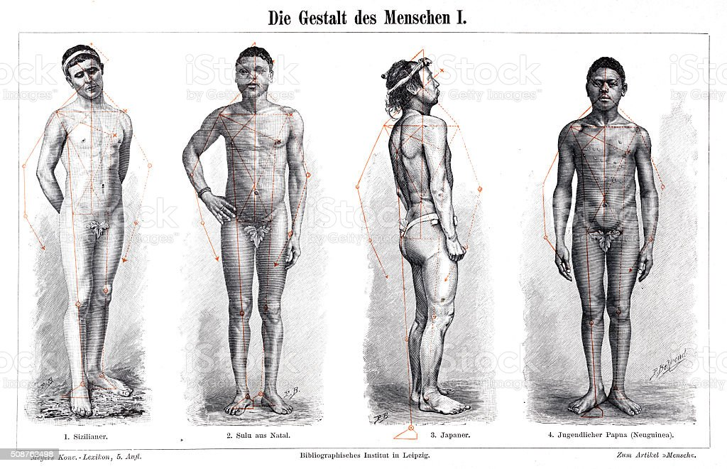 The Anatomy Form Of Men 1897 Stock Vector Art More Images Of Adult