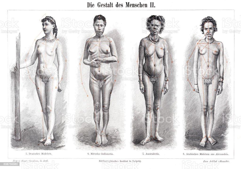Ilustración de La Anatomía Forma De Mujeres Grabado 1897 y más banco ...
