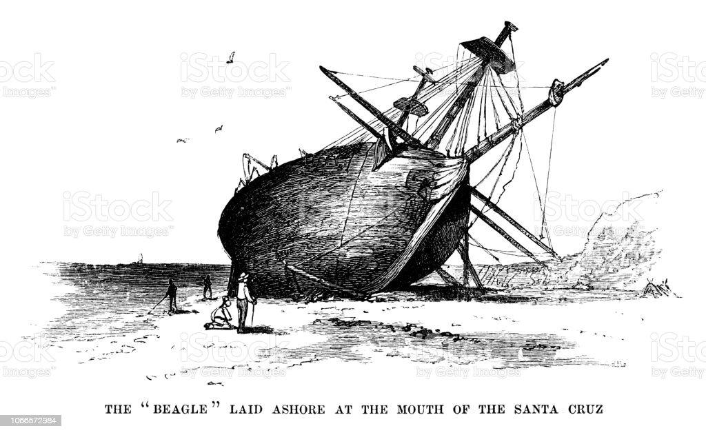 The Beagle laid ashore in Santa Cruz on the Galapagos Islands vector art illustration