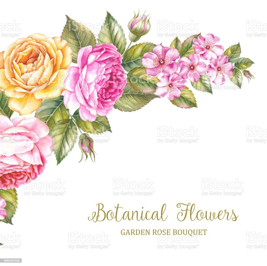 The Botanical Flowers. - ilustração de arte em vetor