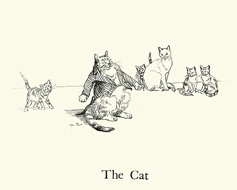 The Cat, from the Nursery Rhyme, Hey Diddle Diddle