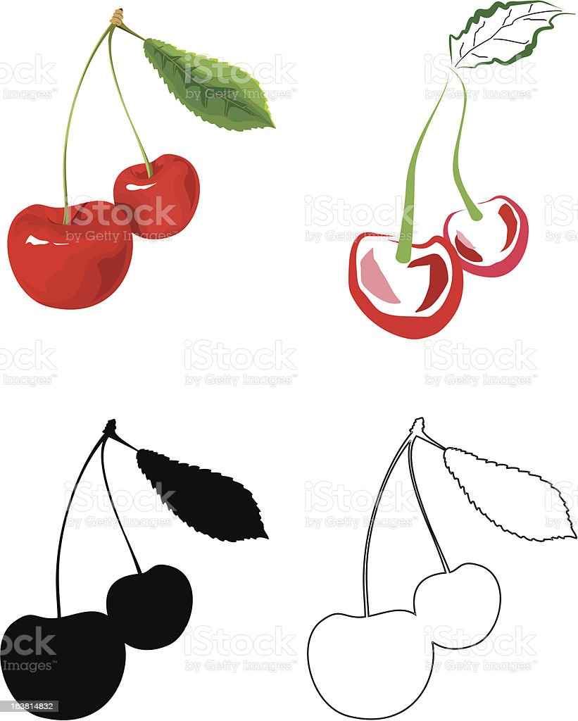 The Cherry royalty-free stock vector art