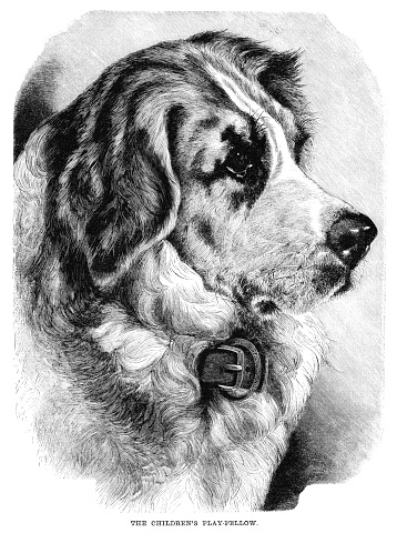 The Children's Play-fellow - Victorian engraving of a dog