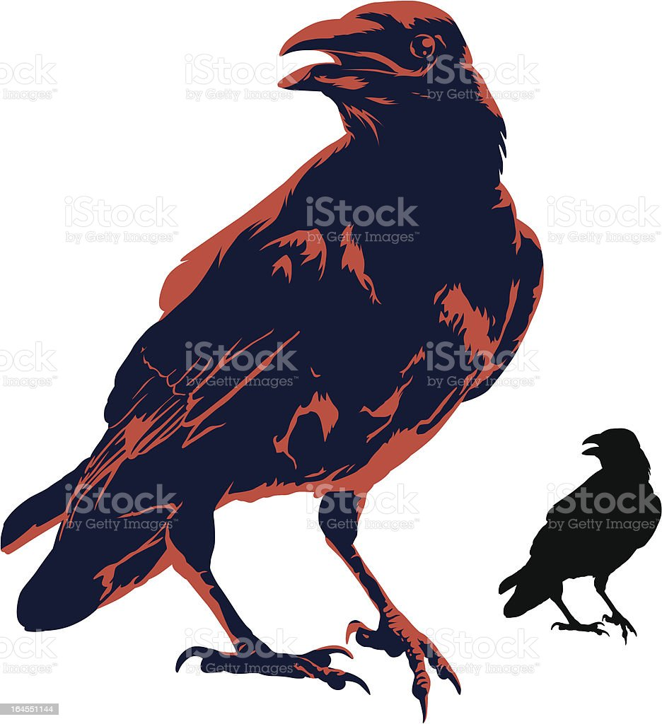 The Crow vector art illustration