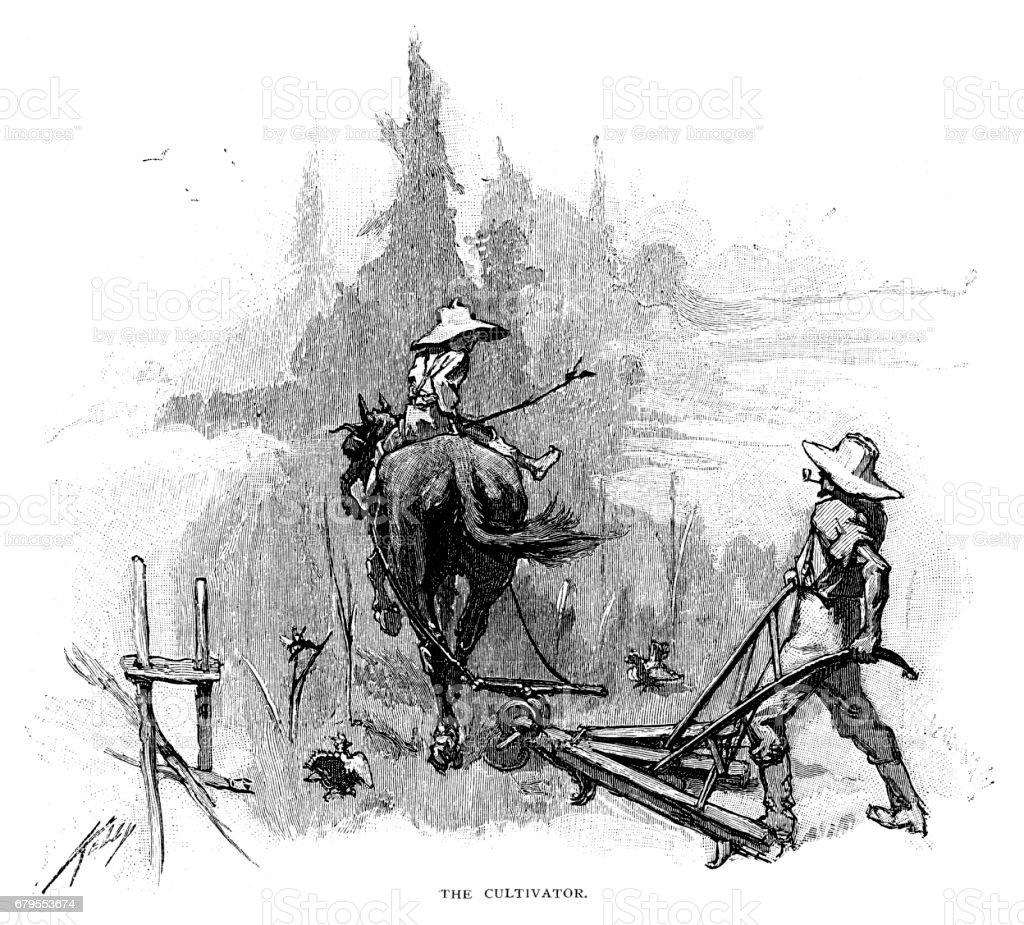 O cultivador - ilustração de arte em vetor