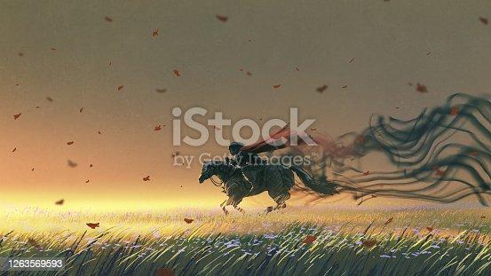 istock The dark horseman in the meadow 1263569593