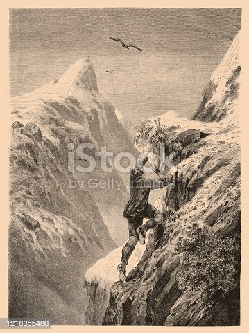 istock The Edelweiss by  Theodor Alexander Weber 1218355486