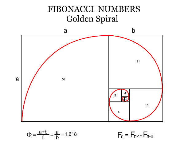 Royalty Free Fibonacci Sequence Clip Art, Vector Images ...