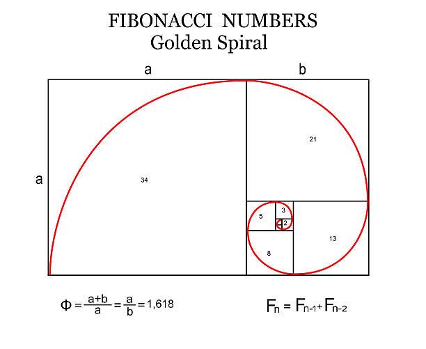 Royalty Free Fibonacci Sequence Clip Art, Vector Images ...