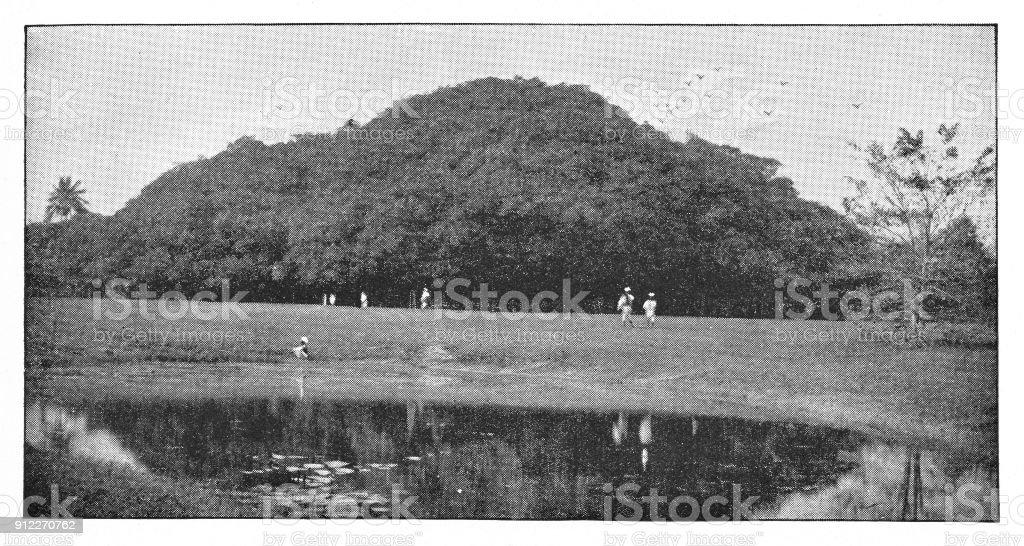 The Great Banyan Tree in Calcutta, India - British Era vector art illustration