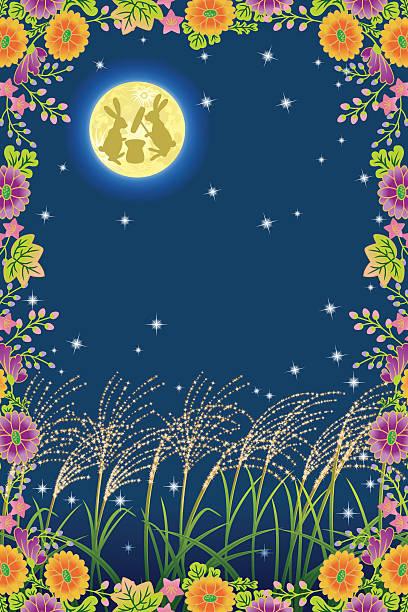 illustrazioni stock, clip art, cartoni animati e icone di tendenza di la luna dell'equinozio in giappone - miscanthus sinensis