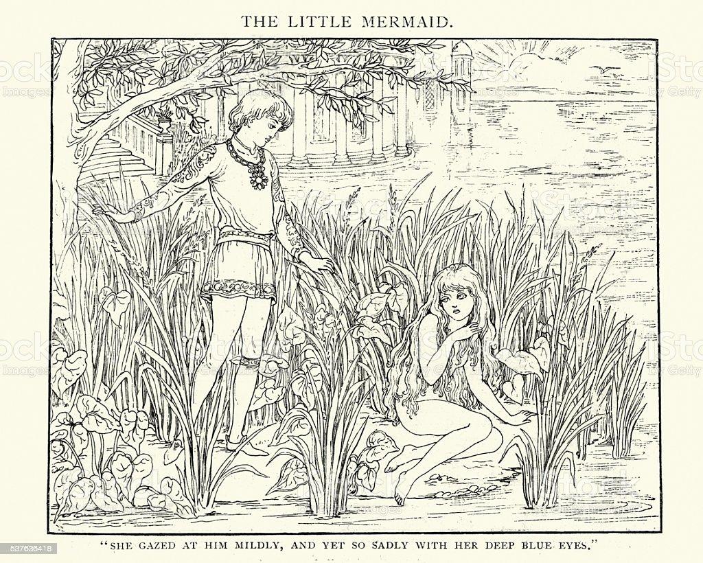 The Little Mermaid She Gazed at him mildly vector art illustration