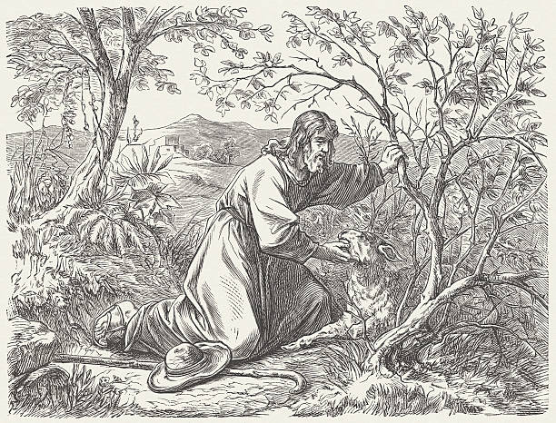 the lost sheep (luke 15, 3-7) - lost stock illustrations