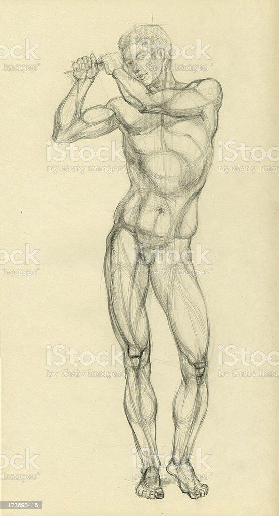 The nudity model vector art illustration