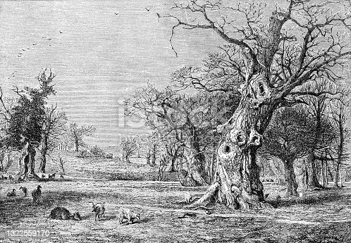 istock The Original Royal Oak at Boscobel House in Staffordshire, England - 18th Century 1322559170