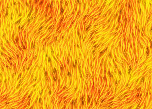 ilustrações, clipart, desenhos animados e ícones de espessura animal em tons quentes de amarelo textura de cabelo - texturas de pelo de animal