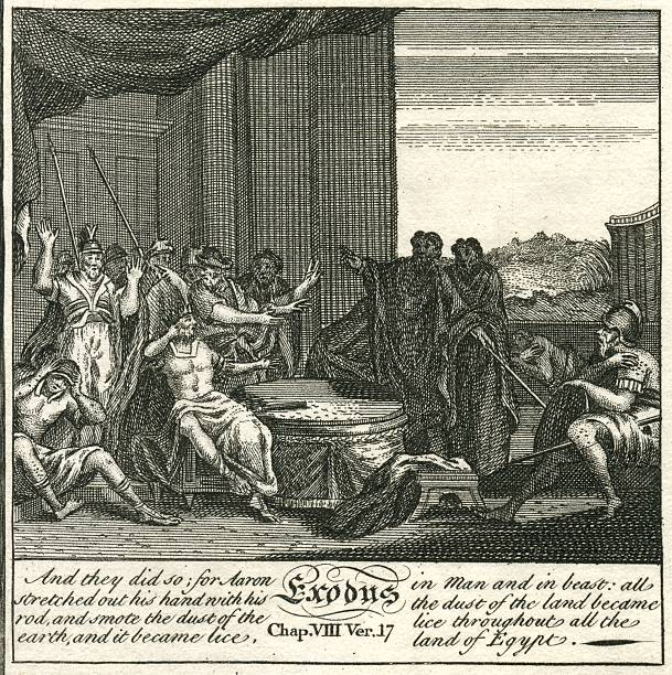 exodus plagues of egypt lice 18th century bible engraving - whiteway engraving stock illustrations, clip art, cartoons, & icons