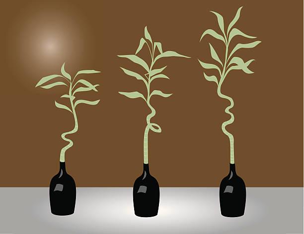 Three bamboos vector art illustration