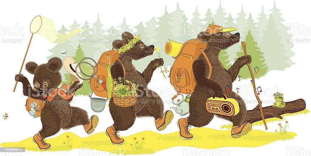 Three bears hiking vector art illustration