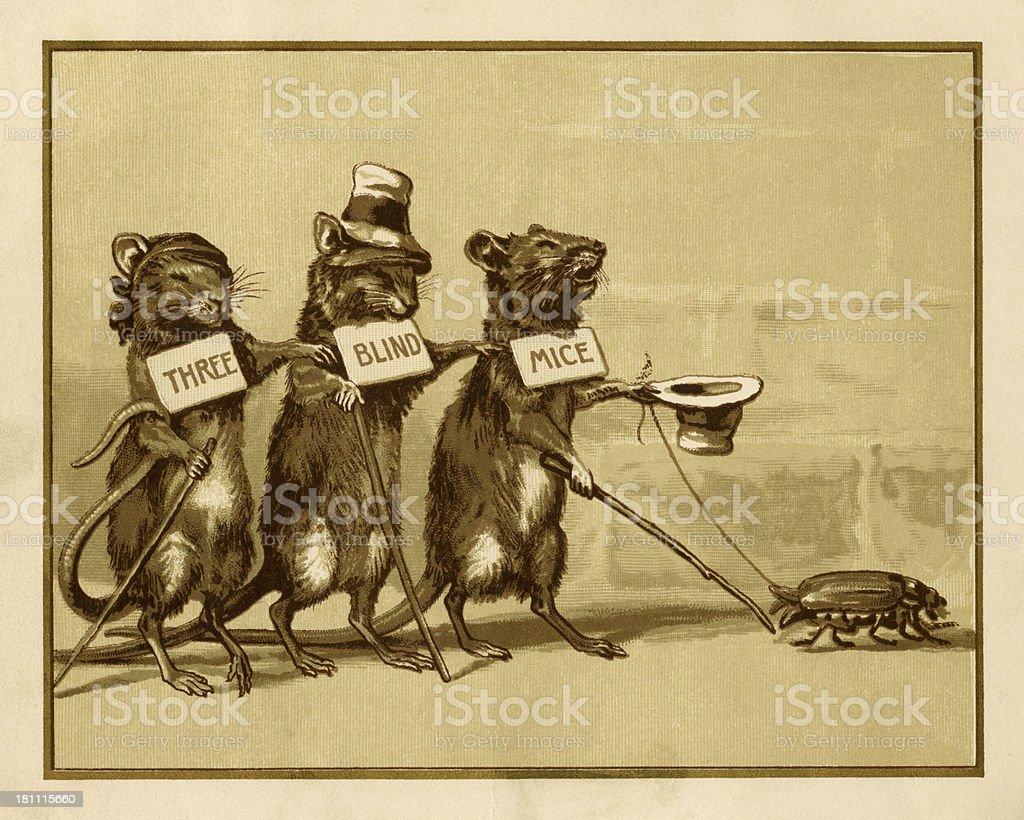 Three blind mice vector art illustration
