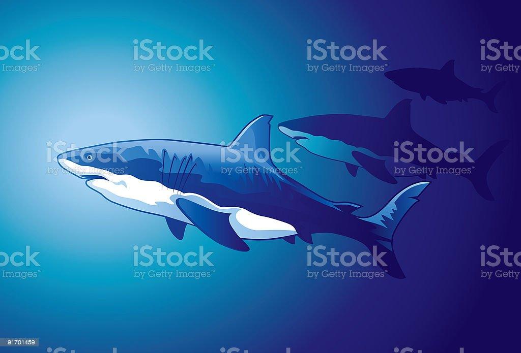 Three sharks royalty-free stock vector art