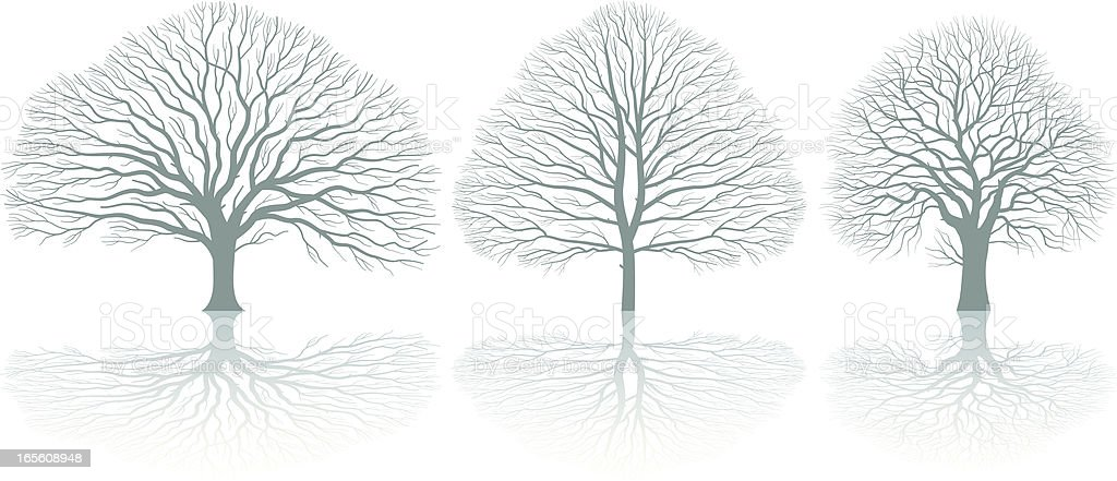 Three trees royalty-free stock vector art