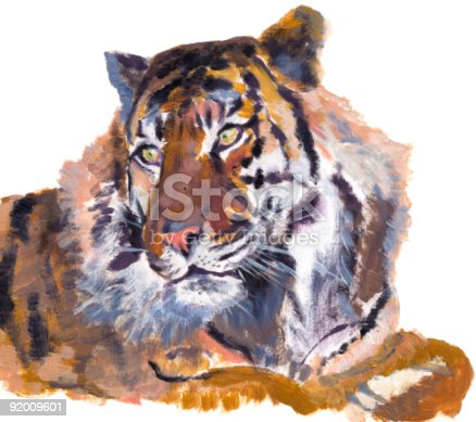 Tiger from Zoo