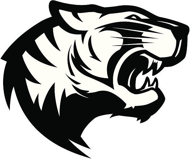 tiger head mascot 2 b&w - tiger stock illustrations, clip art, cartoons, & icons