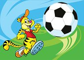 tiger play football
